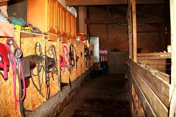 sellerie chevaux avec couloir des boxes